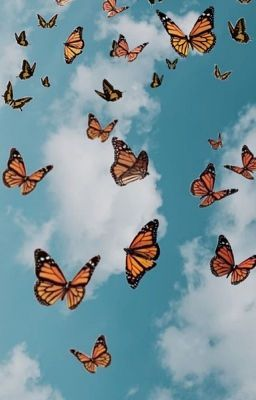 𝕃𝕠𝕟𝕘 𝕝𝕠𝕤𝕥 𝕗𝕣𝕚𝕖𝕟𝕕 𝗷𝗮𝗱𝗲𝗻 𝗵𝗼𝘀𝘀𝗹𝗲𝗿 Butterfly Wallpaper Iphone Butterfly Wallpaper Aesthetic Pastel Wallpaper