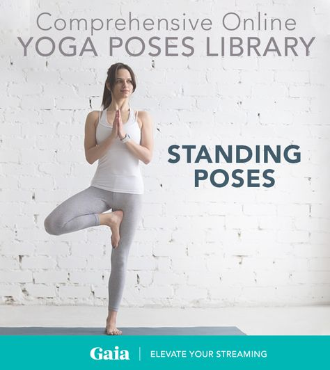 All Standing Poses Articles, Updates & News | Gaia
