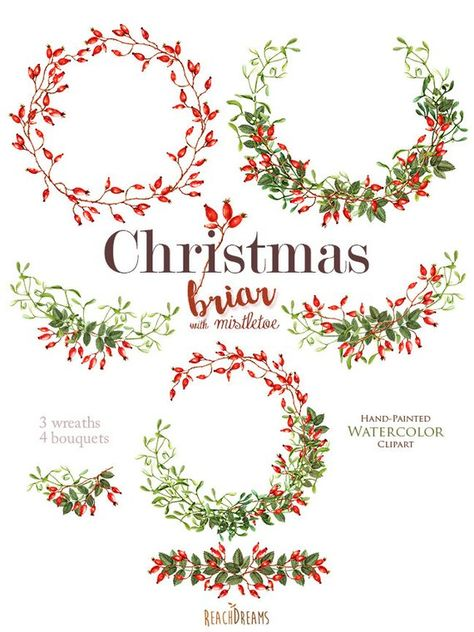 Christmas Watercolor Clipart Mistletoe Briar Holiday Hand