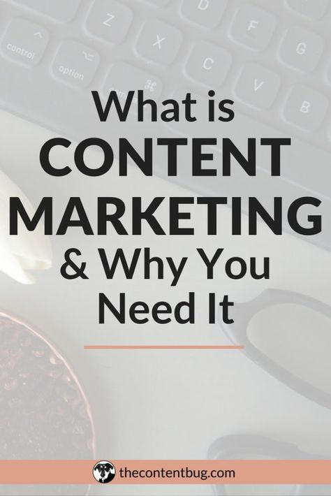What is Content Marketing & Why You Need It - TheContentBug