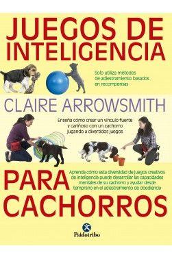 Juegos De Inteligencia Para Cachorros Adiestramiento Canino Cachorros Adiestramiento Perros