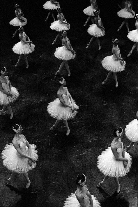 "aurelie-dupont: ""Paris Opera corps de ballet in Nureyev's Swan Lake Photo © Ann Ray "" Ballet Wallpaper, Wallpaper Free, Ballerine Vintage, Vaganova Ballet Academy, Ballet Body, New York Winter, Paris Opera Ballet, Ballet Theater, Nureyev"