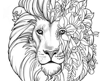 Lion And Tiger Colouring Pages Collection