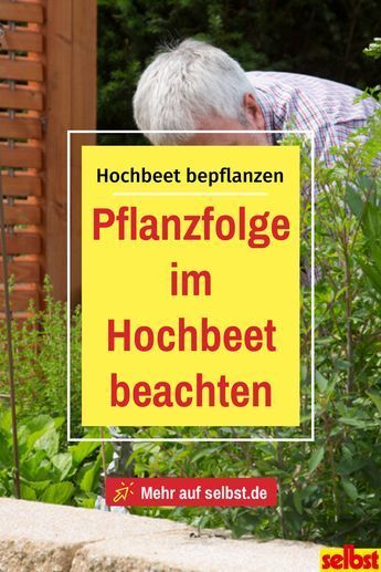 Hochbeete Pflanzen Selbst De In 2020 Raised Garden Beds Raised Garden Garden Beds