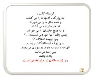 سخن اهل دل: ﮔﻮﺳﺎﻟﻪ گفت : ﭘﺪﺭﺑﺰﺭﮒ ٬ ﺁﺩﻣﻬﺎ ﻣﺎ ﺭﺍ ﻣﯽ ﮐُﺸﻨﺪ ﻭ ﻫﻤﻪ ...   Deep  thought quotes, Text pictures, Persian quotes