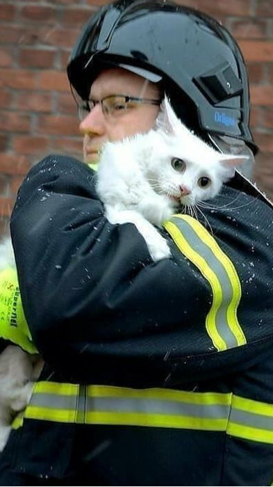 10 Firefighters Who Risked Their Lives To Save Cats