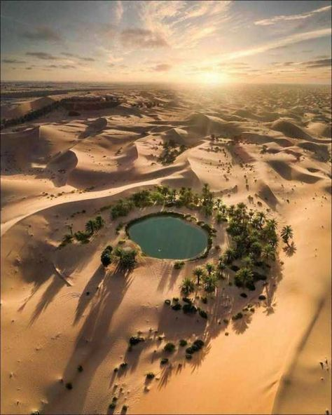 Abu Dhabi, Beautiful World, Beautiful Places, Deserts Of The World, Desert Oasis, Luxor, Beautiful Landscapes, Wonders Of The World, Scenery