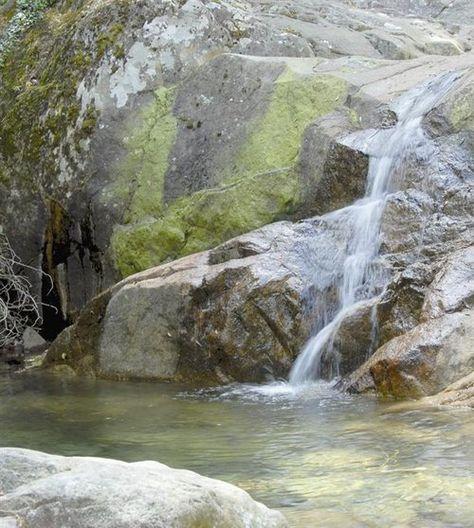 2. La Figarella, au cœur de la forêt de Bonifatu