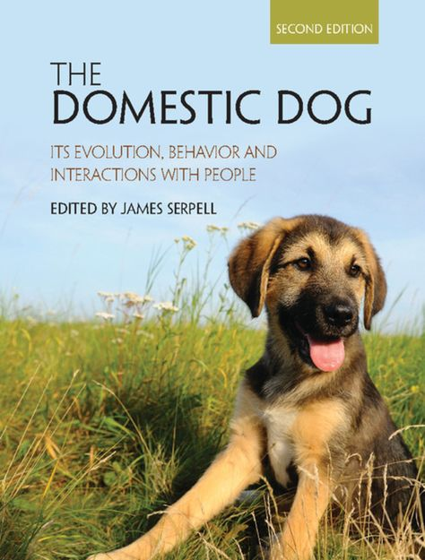 The Domestic Dog Ebook Domestic Dog Dogs Dog Insurance