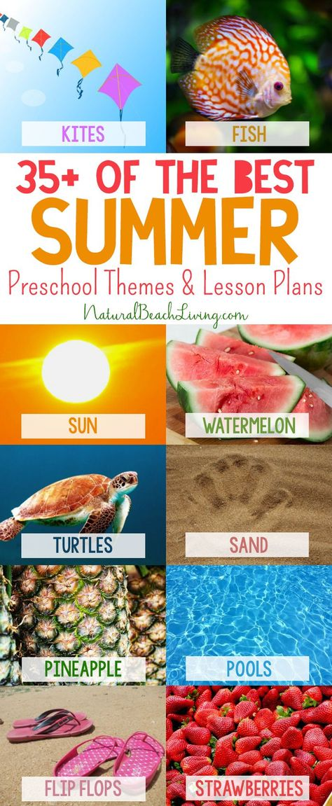 35+ Summer Preschool Themes and Activities - Natural Beach Living#activities #beach #living #natural #preschool #summer #themes