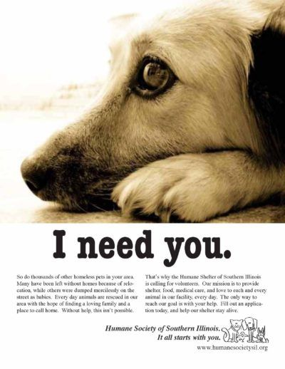Swipe File Print Ads Archives Swipe File In 2021 Humane Society Animals Information Shelter Dogs Adoption