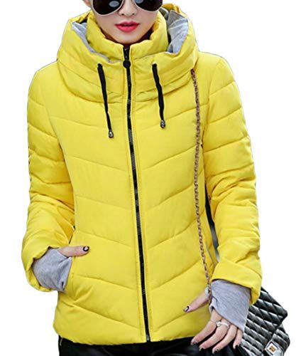 Fubotevic Men Stand Collar Hooded Casual Thicken Winter Warm Quilted Jacket Coat Outerwear