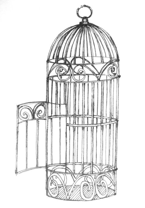Open Bird Cage Drawing | bird- Free animals | dogs | cats | picture and information