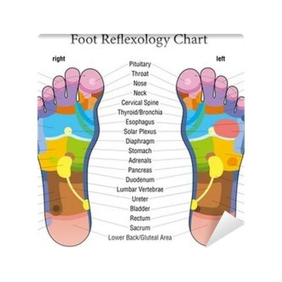 Foot reflexology chart description Wall Mural ✓ Easy Installation ✓ 365 Day Money Back Guarantee ✓ Browse other patterns from this collection!