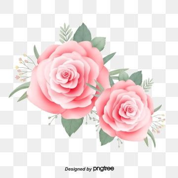 Leaf Hand Drawn Rose Pink Green Leaf Rose Clipart Leaf Clipart Greenery Watercolor Rose In 2020 Pink Flower Painting Flower Illustration Rose Flower Png