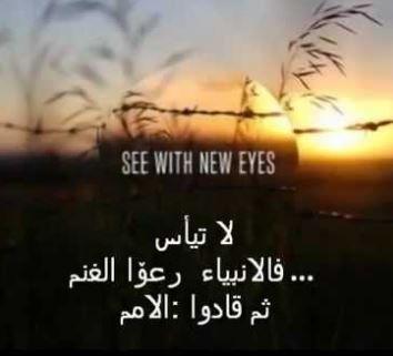 اقوال وحكم عن العزيمة والاصرار اقتباسات عن العزيمة Arabic Quotes Quotes Movie Posters
