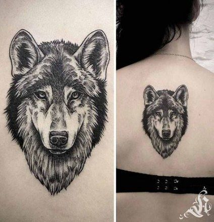 Super Tattoo Wolf Face Drawings 62 Ideas Wolf Face Tattoo Wolf Face Drawing Wolf Face
