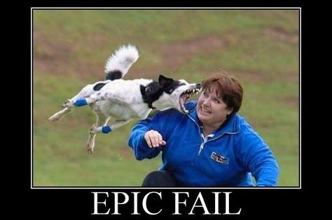 epic fail dog and woman failed funny pictures root image category funny photos funny people