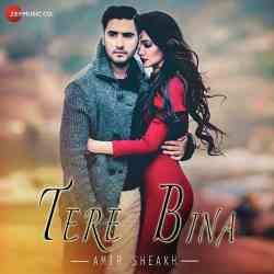 Download Tere Bina Song Music Directed By Amir Sheikh And Sung By Amir Sheikh New Indian Pop Tere Bina Songs 128kb Mp3 Song Download Mp3 Song Bollywood Songs