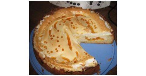 Zebra Kuchen Marmorkuchen Thermomix