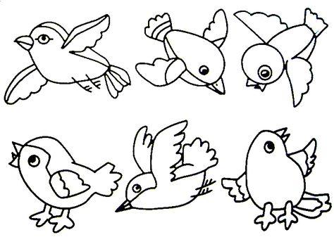Kus Boyama Sayfasi Hayvan Boyama Sayfasi Animal Coloring Pages