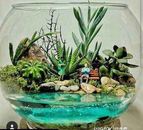 Mahmut Kirnık. 1873 #Garden #terrariumdesign #terrariumlife #terrariumworkshop