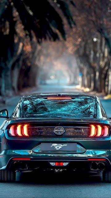 Ford Mustang Bullitt 2019 Mustang Bullitt Ford Mustang Bullitt Ford Mustang Wallpaper