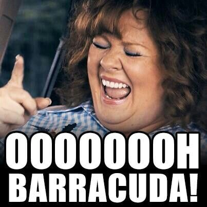 Barracuda Identity Thief Melissa Mccarthy Make Me Laugh