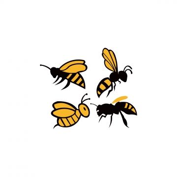 Bee Animal Icon Honey Flying Bee Insect Bugs Animal Icons Bee Icons Honey Icons Png And Vector With Transparent Background For Free Download Animal Icon Bee Icon Bee