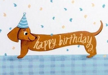 Birthday Happy Birthday Dachshund Happy Birthday Dog Happy