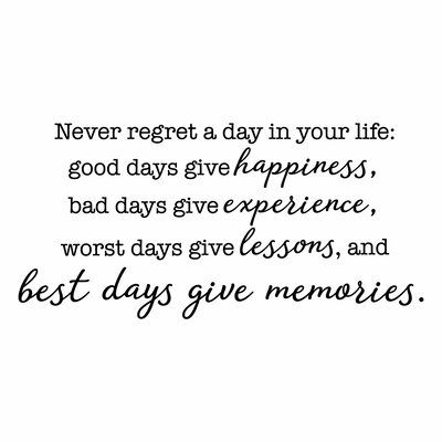 Belvedere Designs LLC Never Regret a Day Wall Quotes™ Decal