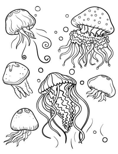 Jellyfish Coloring Page Animal Coloring Pages Ocean Coloring Pages Fish Coloring Page