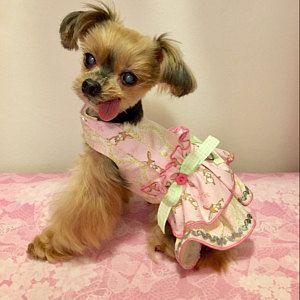 Jovy Ha Anadido Una Foto De Su Compra Small Dog Dresses Dog Clothes Puppy Clothes