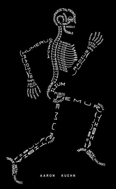 Art Skeleton, con los nombres de los huesos