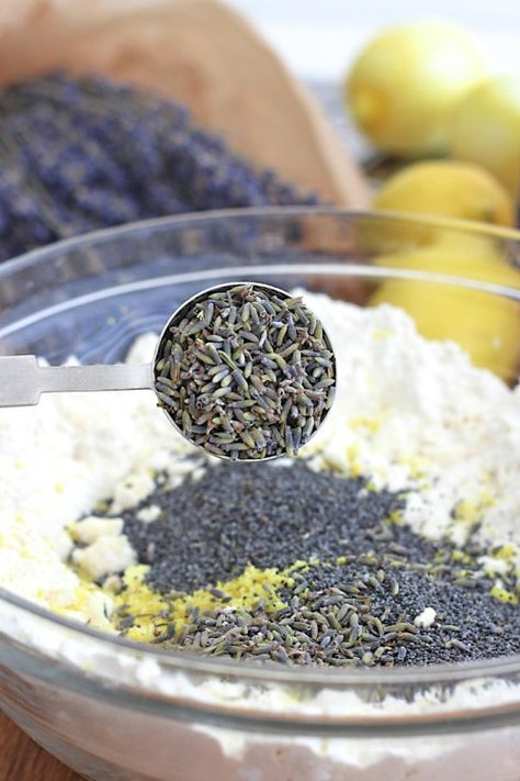 Lemon Lavender Poppy Seed SconesReally nice recipes. Every  Mein Blog: Alles rund um die Themen Genuss & Geschmack  Kochen Backen Braten Vorspeisen Hauptgerichte und Desserts # Hashtag