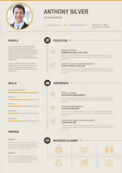Accounting Manager Resume Template Mycvstore Infographic Resume Cv Infographic Infographic Resume Template