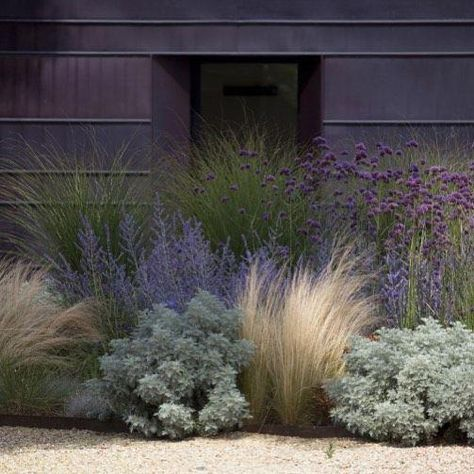 Fabulous Xeriscape Front Yard Design Ideas and Pictures - Backyard Landscaping Modern Landscape Design, Landscape Plans, Modern Landscaping, Front Yard Landscaping, Landscaping Ideas, Mulch Landscaping, Urban Landscape, Landscape Grasses, Landscape Edging