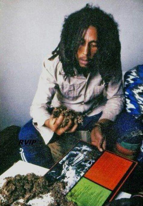 Bob Marley, Weed was spiritual, not illegal . Fotos Do Bob Marley, Bob Marley Art, Reggae Bob Marley, Bob Marley Quotes, Reggae Rasta, Reggae Music, Reggae Style, Bob Marley Smoking, Bob Marley Legend