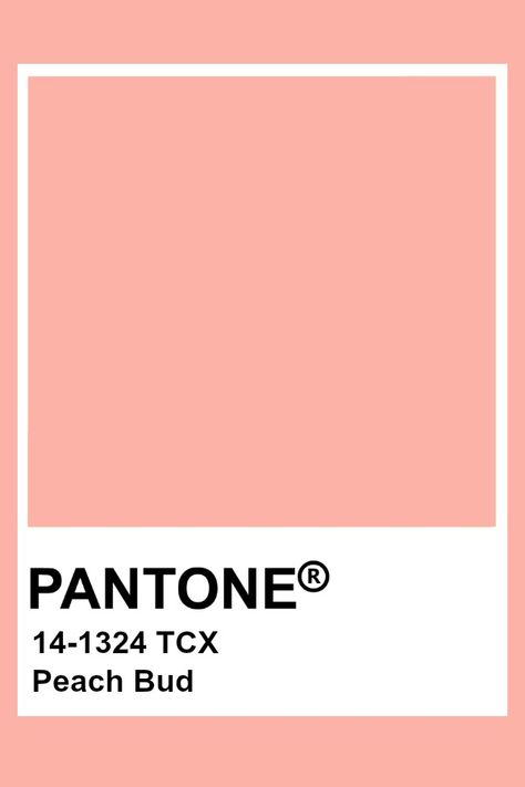 Pantone Peach Bud
