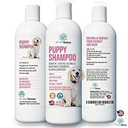 Puppy Bath Time When And How To Bathe A Puppy Puppy Shampoo