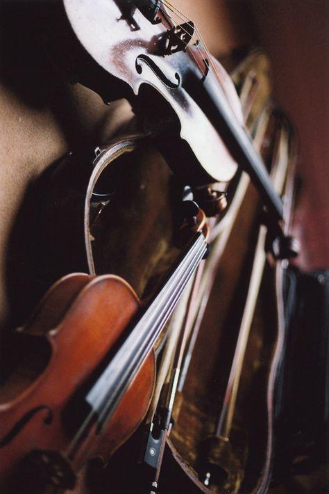 Sia - Chandelier | Violin Cover & Parody by @OMJamieViolin ...
