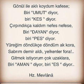 Mevlana Sozleri Guzel Sozler Resimli Sozler Ask Sozleri Cool Words Words Worth Turkish Quotes