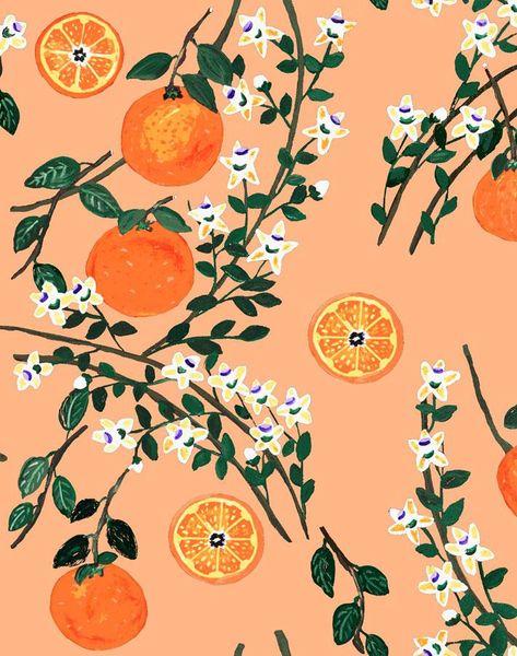 'Arance Dolci' Wallpaper by Carly Beck - Orange - Wallpaper Roll - Sample