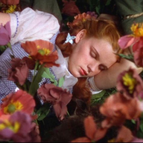 *DOROTHY ~ The Wizard of OZ, 1939