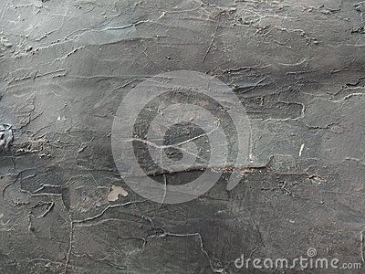 Cement Wall Textured With Grey And Black Shaded Background Wallpaper Many Uses For Paintings Printing Mobile Backgrounds Cement Walls Textured Walls Wallpaper