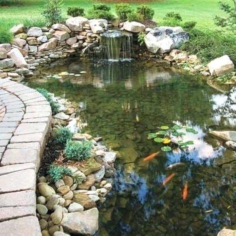 Garden Pond Ideas Pictures