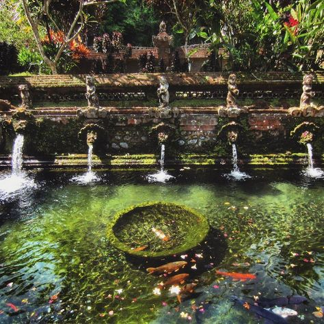 Beside the pool with holy water there are two walled bathing sections that the locals and pilgrims to #GunungKawi Sebatu actually use for public bathing. #Bali #Indonesia #SoutheastAsia #Asia #Ubud