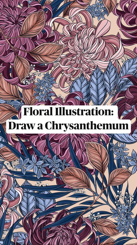 Floral Illustration:  Draw a Chrysanthemum