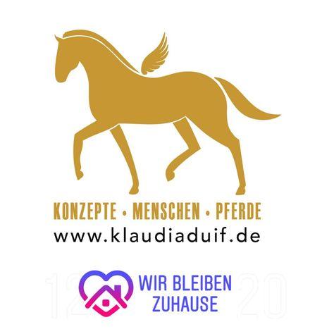 Pferde Und Reitsachen Zu Verschenken Aufgrund Der Aktuellen Situation Mochte Ich Pferdebesitzerinnen Und Pferdebesitzern Die Es In 2020 Home Decor Decals Home Decor