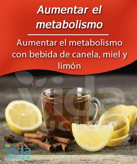 dieta acelerar metabolismo pdf - ¿Qué es?